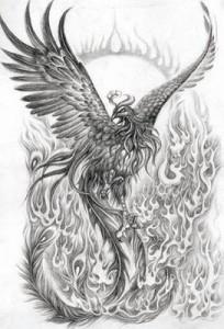 phoenix-tattoo-9 (1)